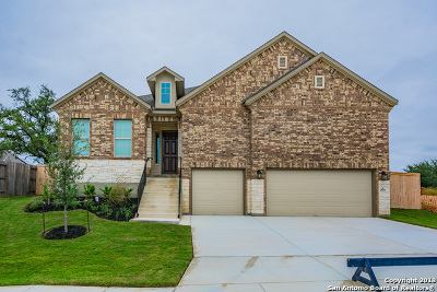 Bexar County Single Family Home For Sale: 2026 Sladen Hills