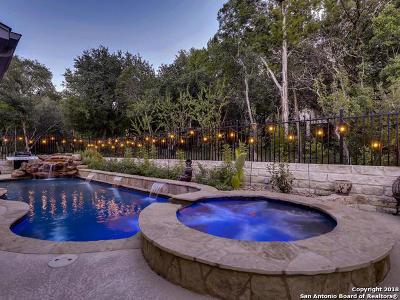 San Antonio Single Family Home For Sale: 12010 Sandbar Hill
