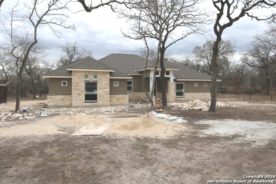 La Vernia Single Family Home For Sale: 189 Cibolo Ridge Dr