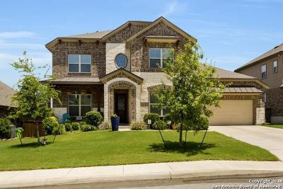 Bexar County Single Family Home For Sale: 12123 Upton Park