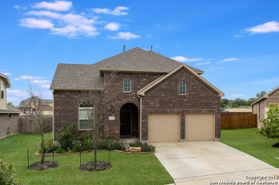Bulverde Single Family Home For Sale: 30641 Holstein Rd