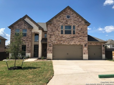 Bexar County Single Family Home For Sale: 23307 Emerald Pass