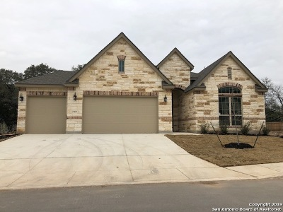 Boerne Single Family Home For Sale: 27017 Daffodil Place
