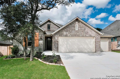 Boerne Single Family Home For Sale: 114 Coldwater
