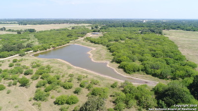 Seguin Farm & Ranch For Sale: 5857 Fm 466