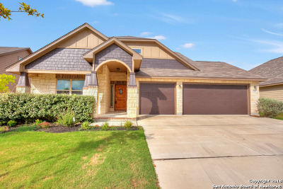 Single Family Home For Sale: 735 Stratus Path