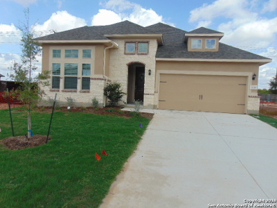 Comal County Single Family Home For Sale: 3118 Deer Hollow