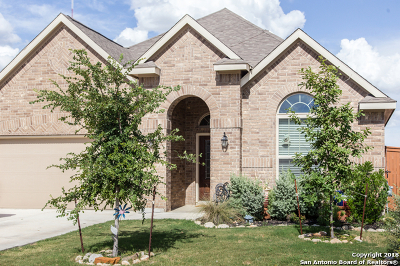 San Antonio Single Family Home For Sale: 12142 Twisted Spur