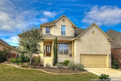 Cibolo Canyons Single Family Home For Sale: 3611 Pinnacle Dr