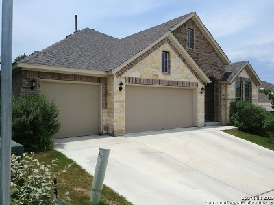 Helotes Single Family Home For Sale: 17723 Handies Peak