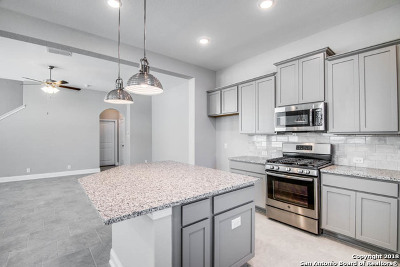 Bexar County Single Family Home For Sale: 17307 Moscato