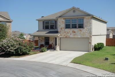 San Antonio Single Family Home Back on Market: 3934 Mahogany Cove