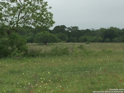 Guadalupe County Residential Lots & Land For Sale: 00 Prairie Lea Rd