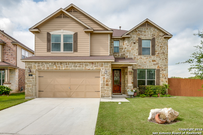 Boerne Single Family Home For Sale: 224 Winding River