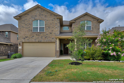 San Antonio Single Family Home For Sale: 12542 Loving Mill