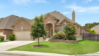 Boerne Single Family Home For Sale: 228 Krieg Dr