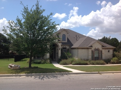 New Braunfels Single Family Home For Sale: 226 Hamburg Ave