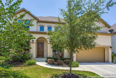 San Antonio Single Family Home For Sale: 12018 Sandbar Hill