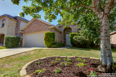 Bexar County Single Family Home For Sale: 14023 Tramonto Hill