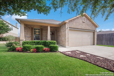 Boerne Single Family Home New: 7502 Camino Manor