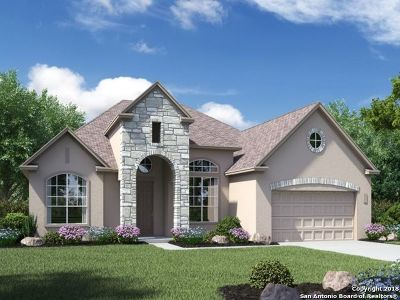 Bexar County Single Family Home New: 11318 Ivy Cadence