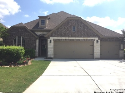 Bexar County Single Family Home New: 11447 Violet Cove