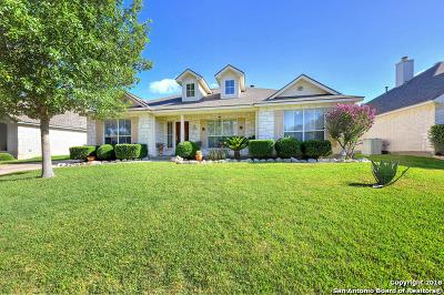 Helotes Single Family Home New: 9311 Tyler Oaks