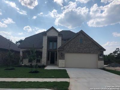 Alamo Ranch Single Family Home For Sale: 5823 Burro Stone