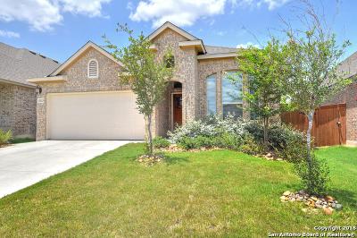 San Antonio Single Family Home New: 12023 Cathedral Peak