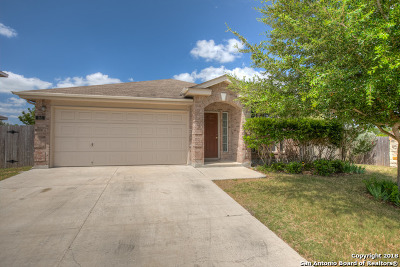 New Braunfels Single Family Home For Sale: 165 Crane Crest Dr