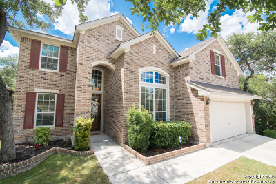 Bexar County Single Family Home New: 12115 Chambers Cove