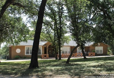 Guadalupe County Single Family Home New: 2085 Schneider Rd