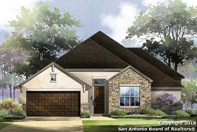 New Braunfels Single Family Home For Sale: 619 Coral Berry Trail