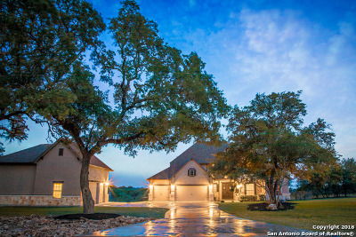 New Braunfels Single Family Home For Sale: 112 Gruene Haven