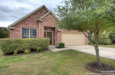 Cibolo Canyons Single Family Home New: 3414 Highline Trl