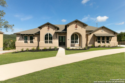 Helotes Single Family Home New: 12703 Bluff Spurs Trail