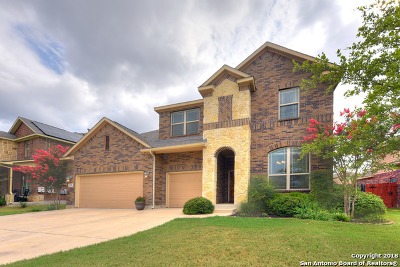 Boerne Single Family Home New: 8218 Mystic Chase