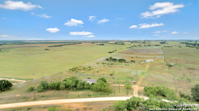 Wilson County Farm & Ranch For Sale: 2730 County Road 232