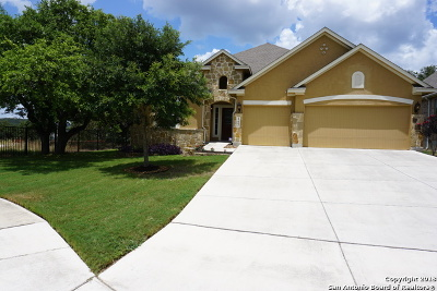 Helotes Single Family Home For Sale: 17003 Castlehead Dr