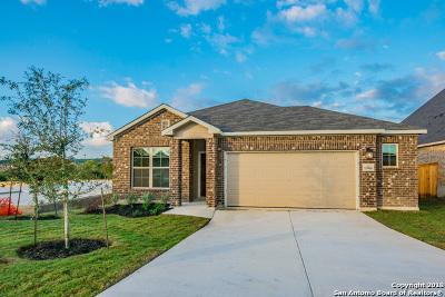 Bexar County Single Family Home For Sale: 15006 Costa Leon