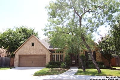 Bexar County Single Family Home New: 13519 Palatine Hill