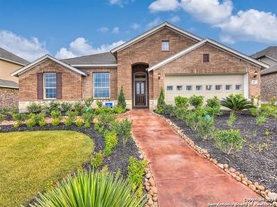 Single Family Home New: 611 Ridge Park Drive