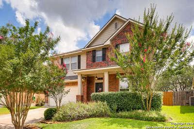 Single Family Home New: 2715 Trinity Falls