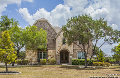 Helotes Single Family Home New: 11211 Raw Sienna