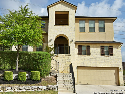 Helotes Single Family Home New: 8746 Roswell Ridge