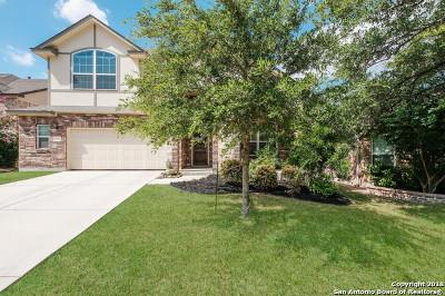 Bexar County Single Family Home New: 12127 Presidio Path