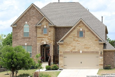Bexar County Single Family Home New: 25919 Avellino Bluff