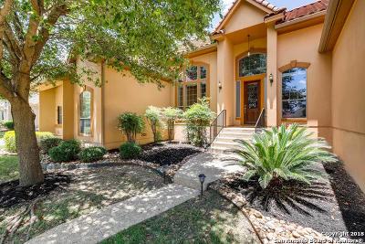 San Antonio Single Family Home New: 31 Three Lakes Dr