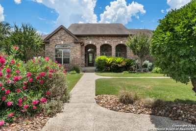 Boerne Single Family Home New: 29809 Fairway Vista Dr