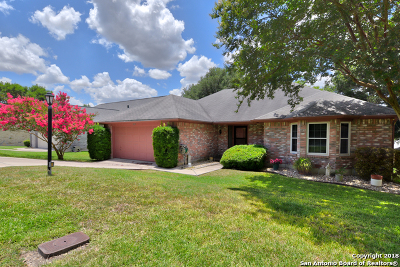 Cibolo Single Family Home For Sale: 3809 Overlook Dr